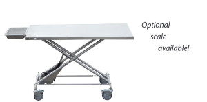 Electric Transport Table
